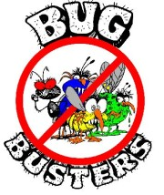 Bug Busting Head Louse Detection Combs now on sale!